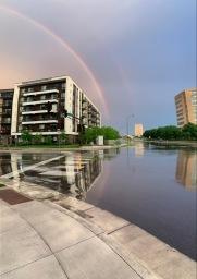 7.10.rainbow deziel 6.19